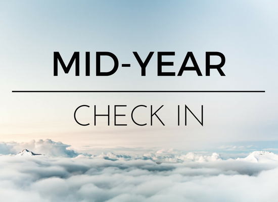 2017 Mid-Year Check In